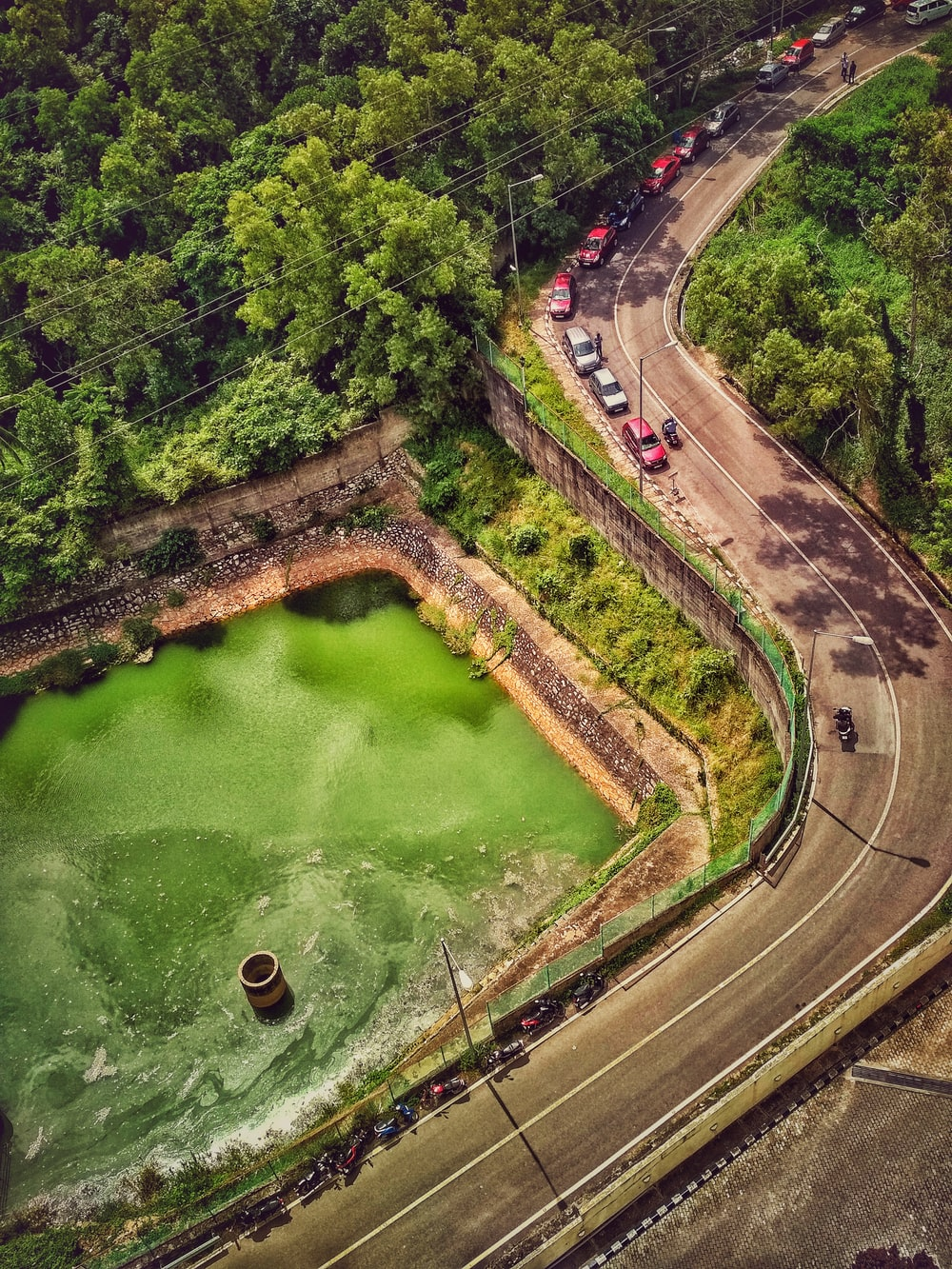 aerial photo of cars on road near green body of water
