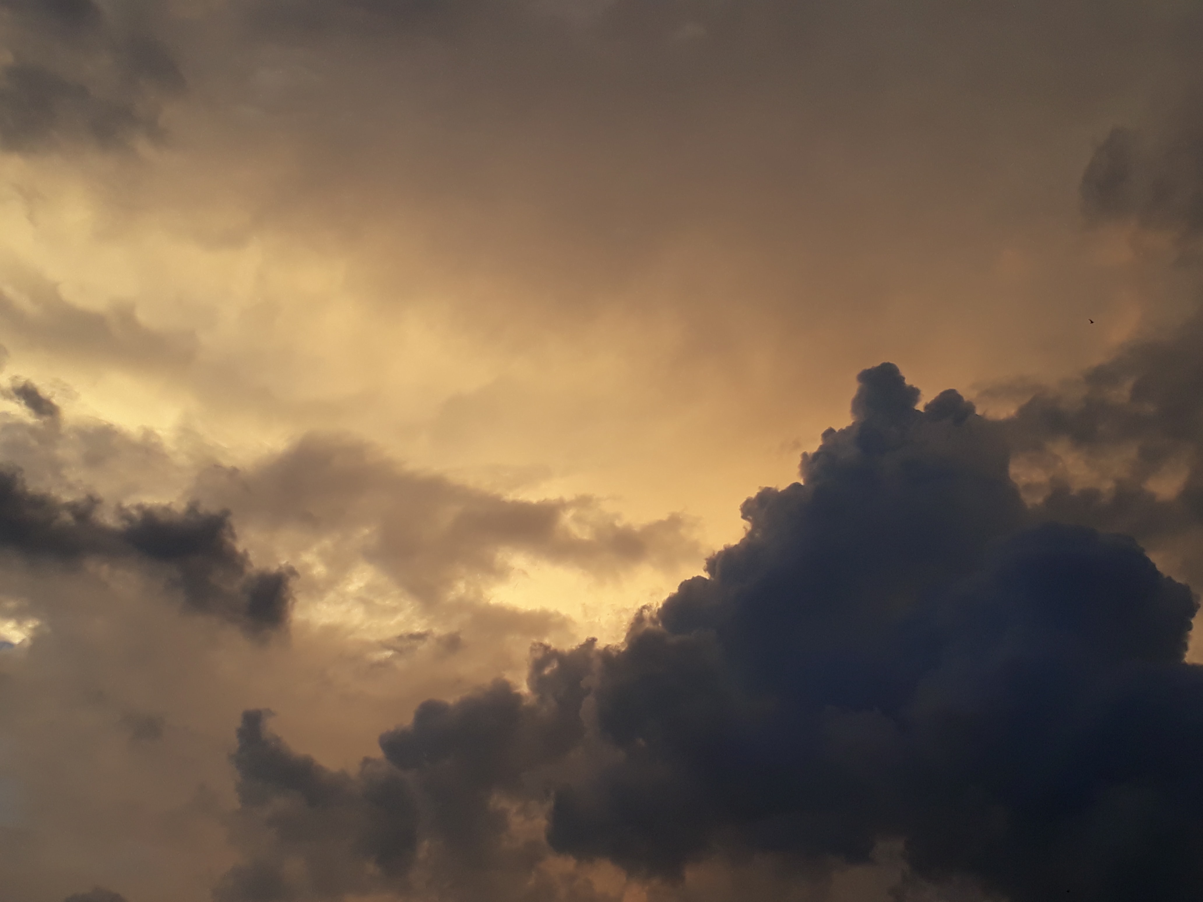 low-angle photography of white clouds