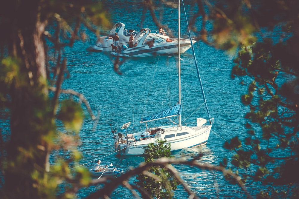 two white yachts on body of water