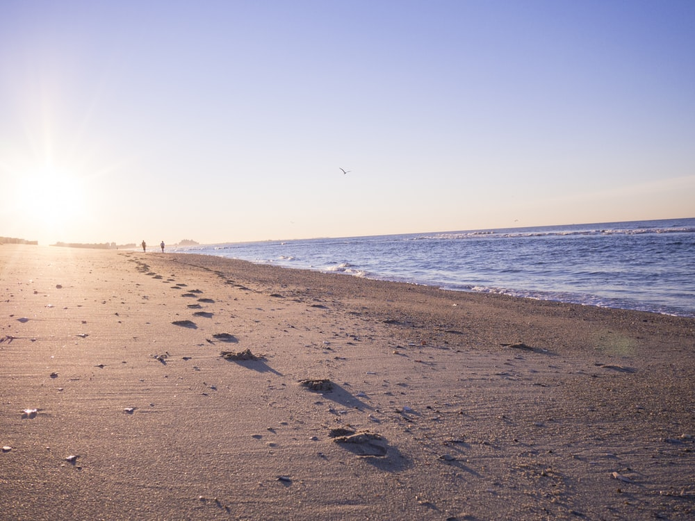 two person walking on brown sands