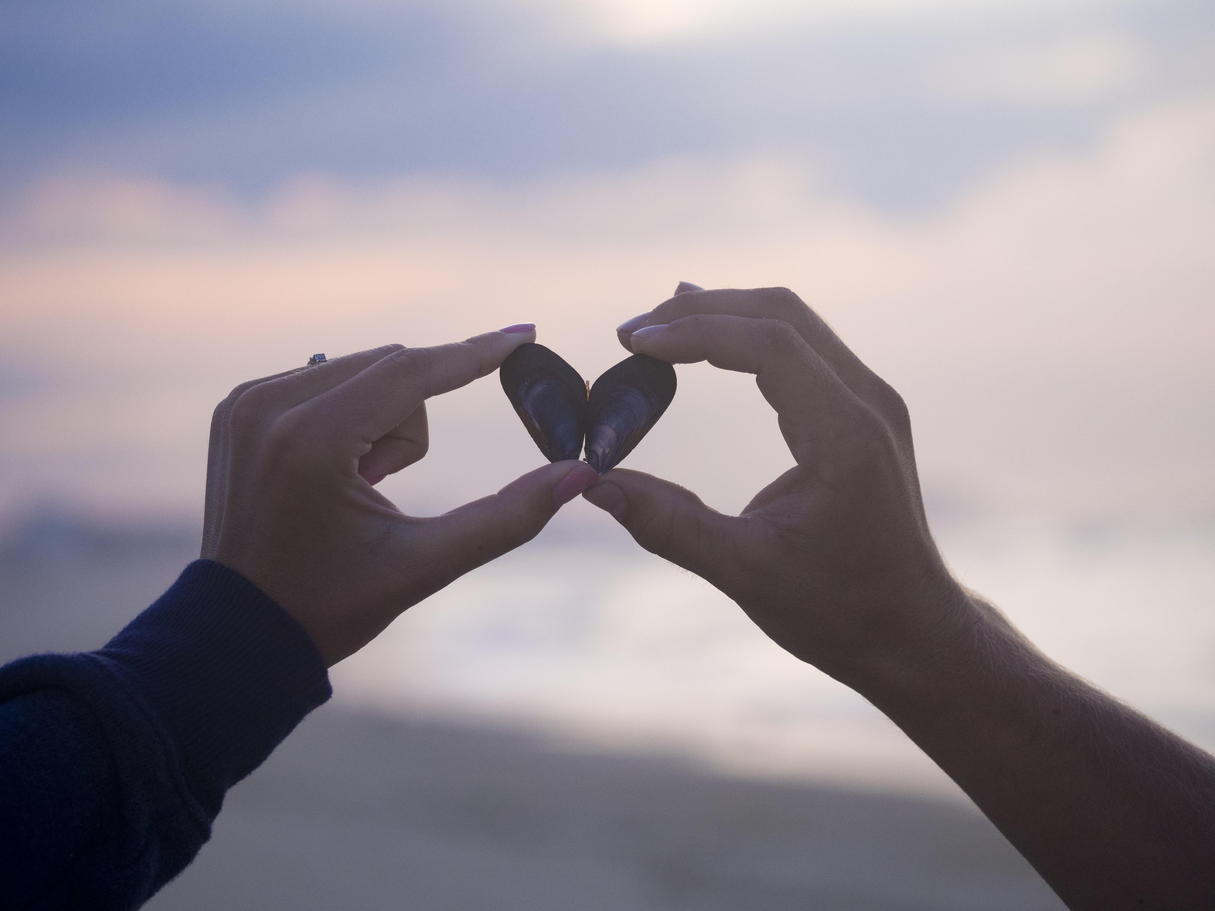person holding black stones