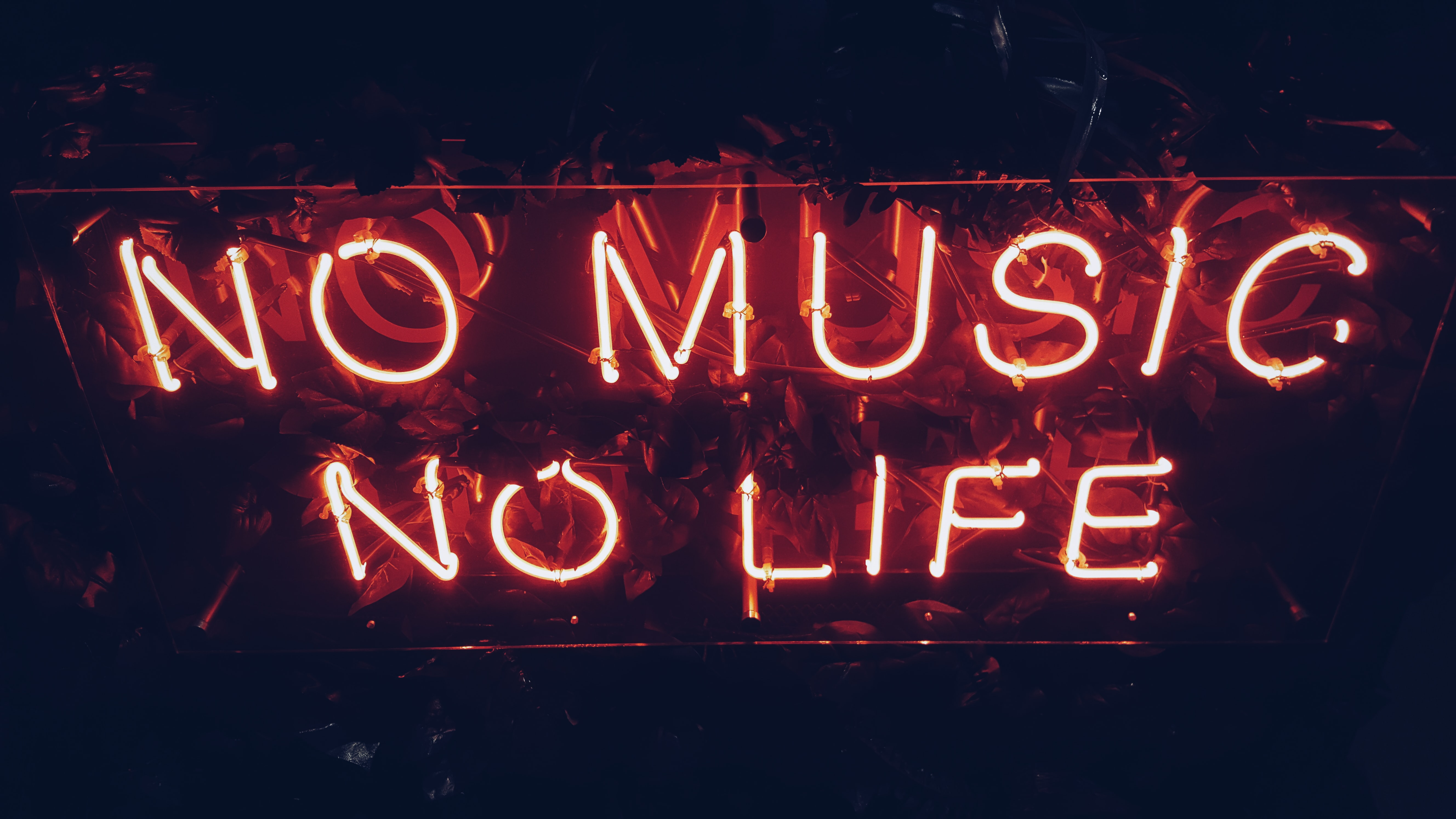 """A red neon reads """"No music, no life"""" against a dark background"""