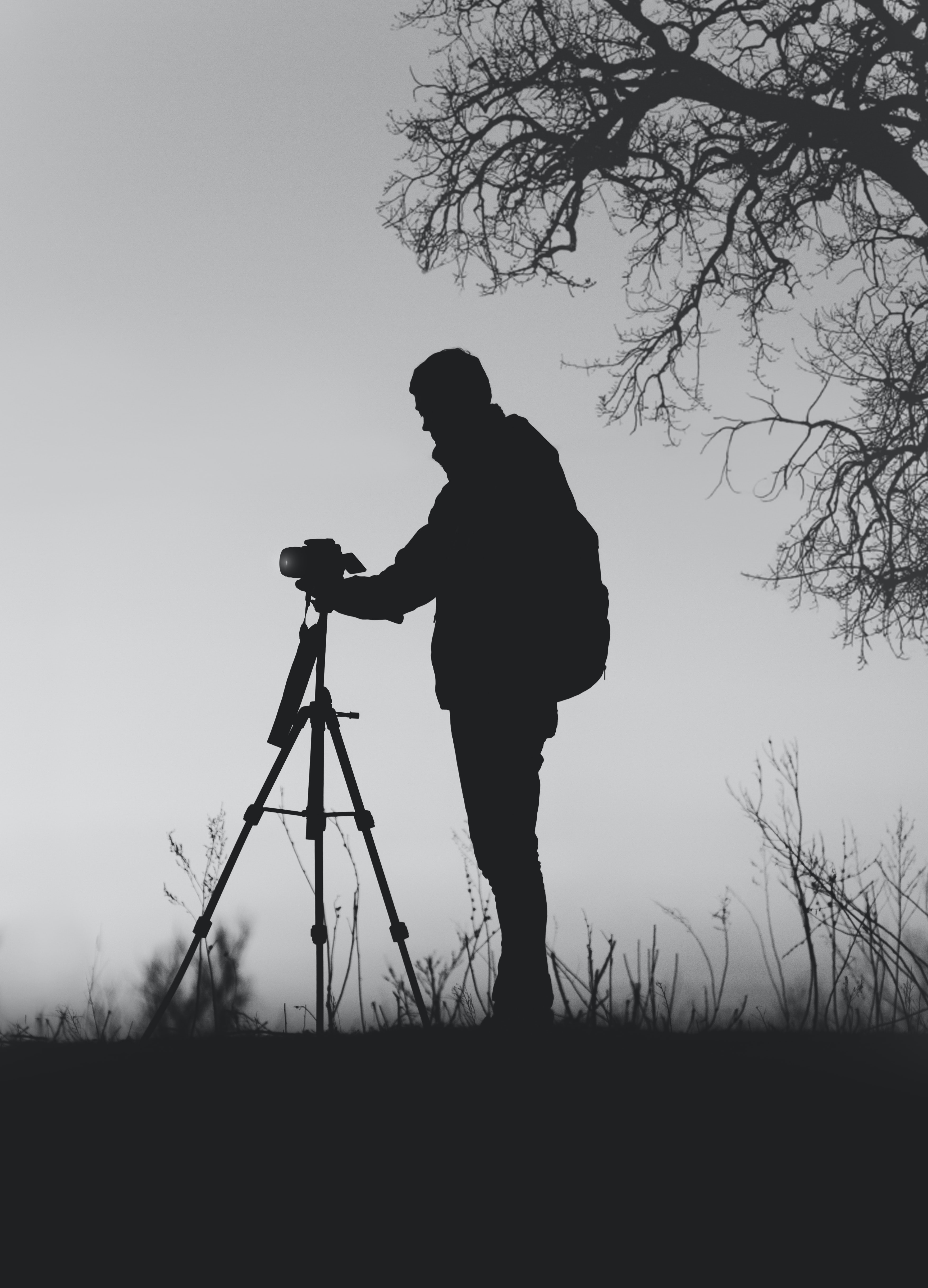 silhouette photo of man in front of DSLR camera with tripod under leafless tree