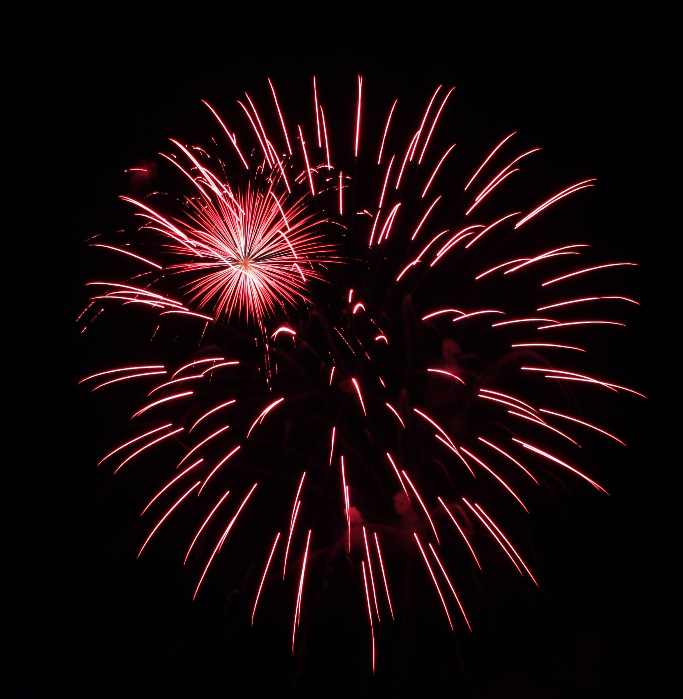Red fireworks exploding in the night sky
