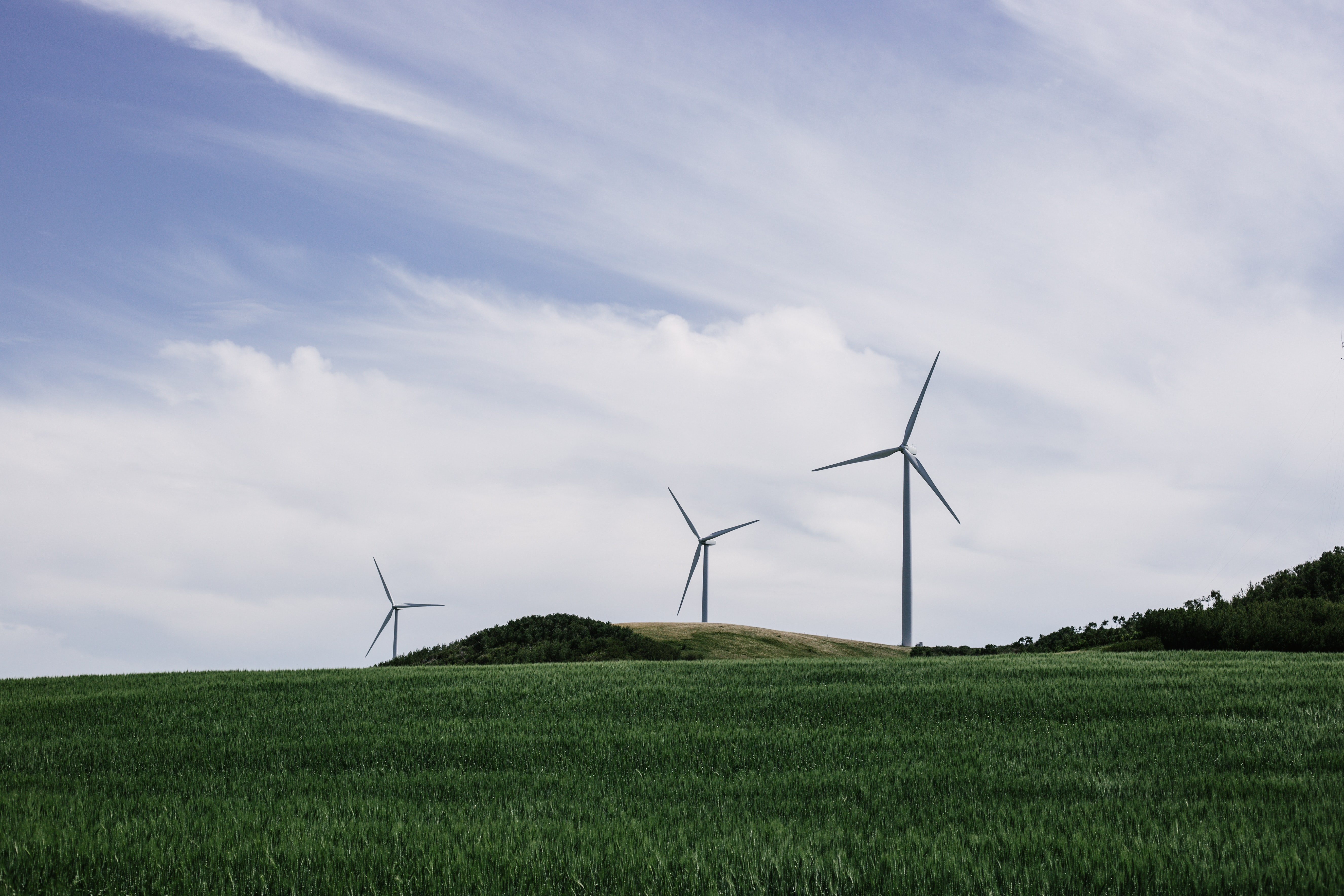 Wind turbines create green energy in a lush pasture
