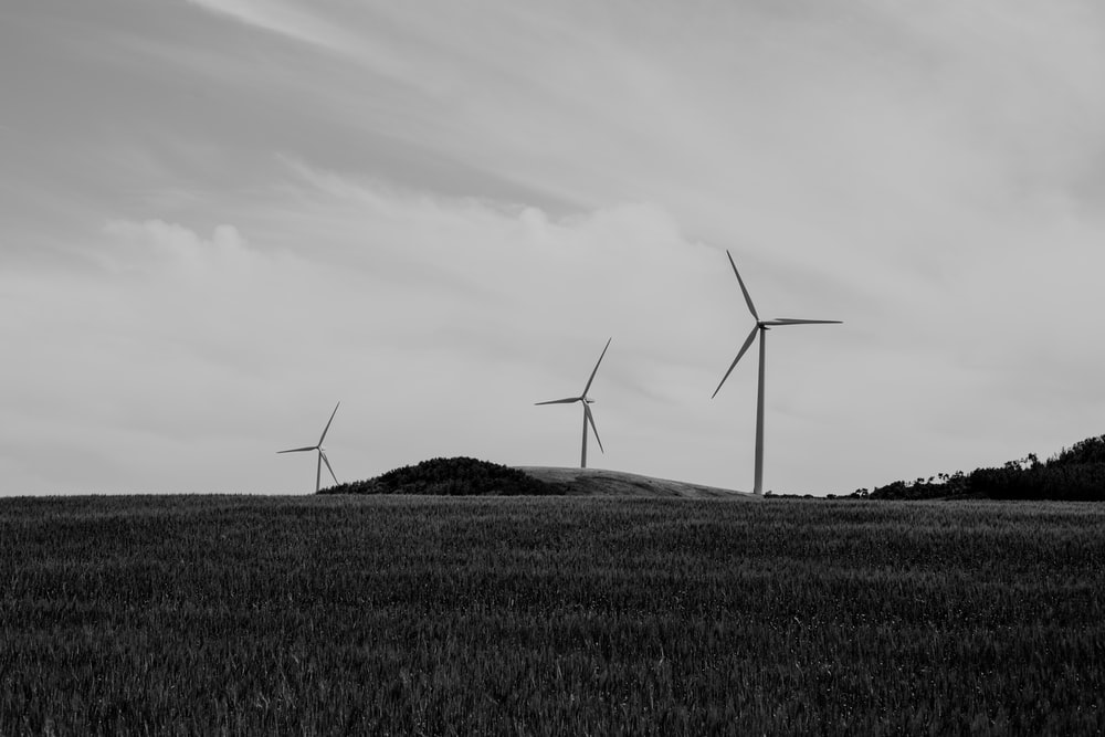 grayscale photo of line windmills