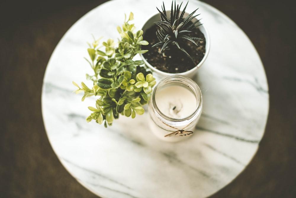 white votive candle near plant pot