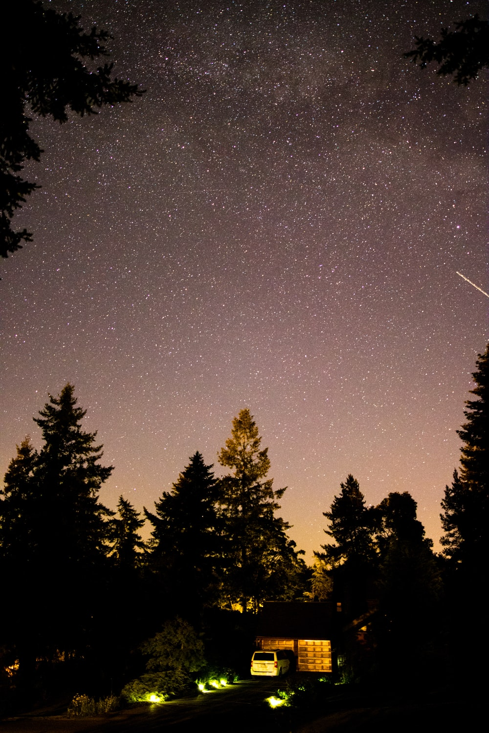 silhouette of vehicle and trees under starry sky