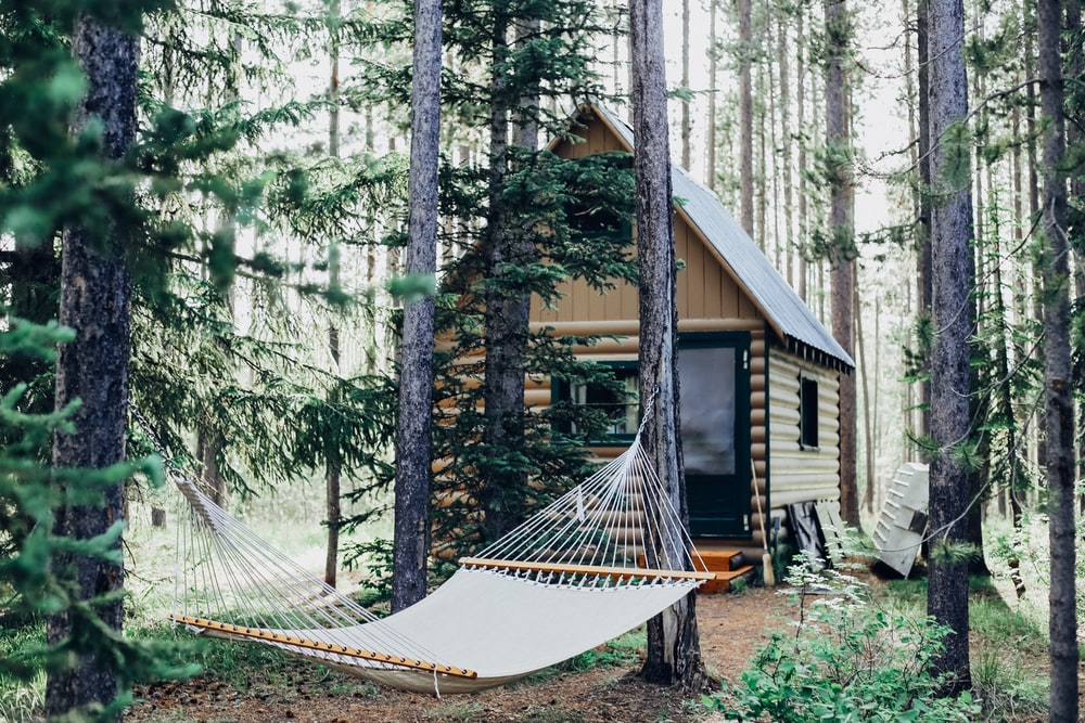 wooden house with hammock attached on tree