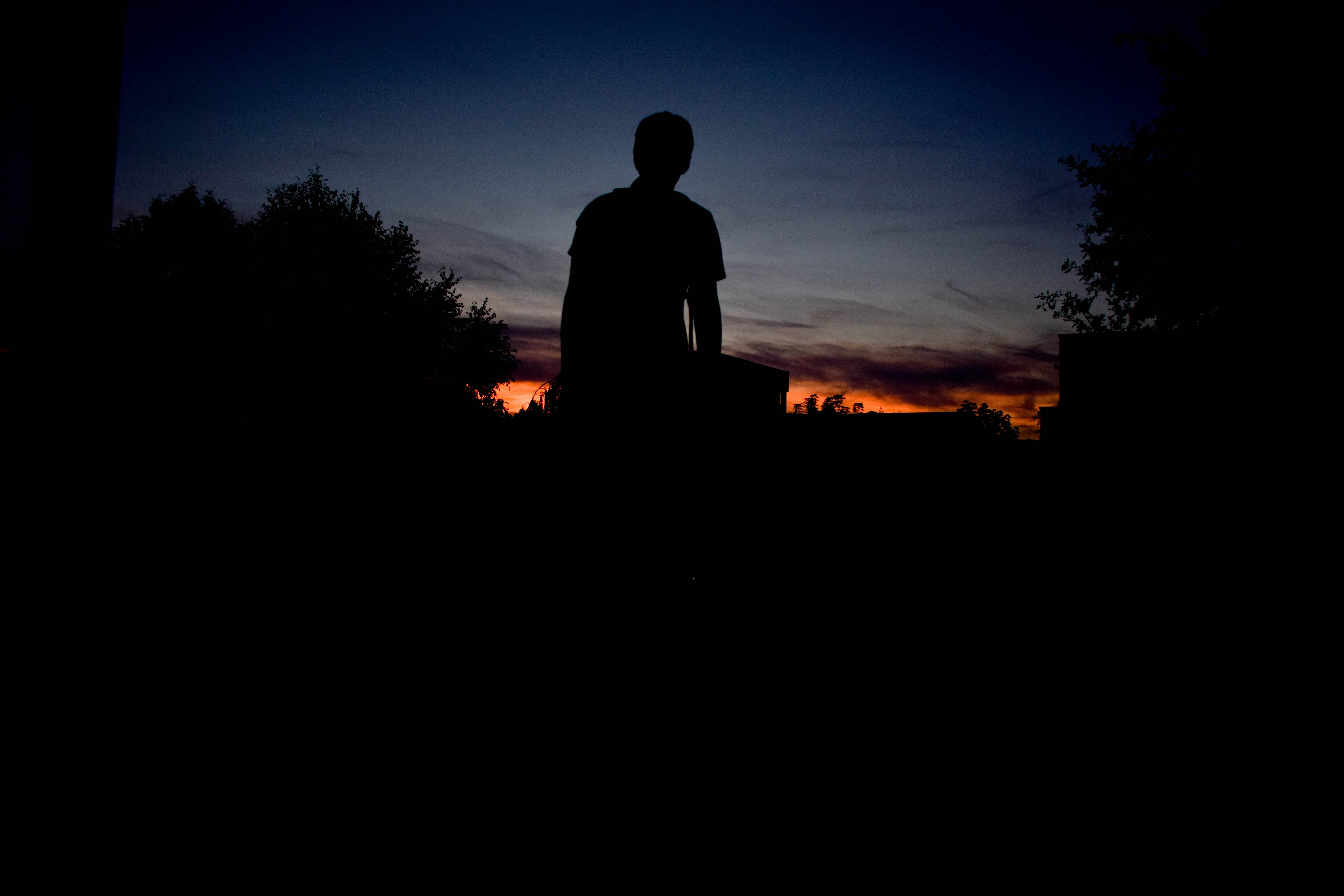 A man and trees are cast in silhouette against the end of a sunset and twilight sky in Zeewolde.