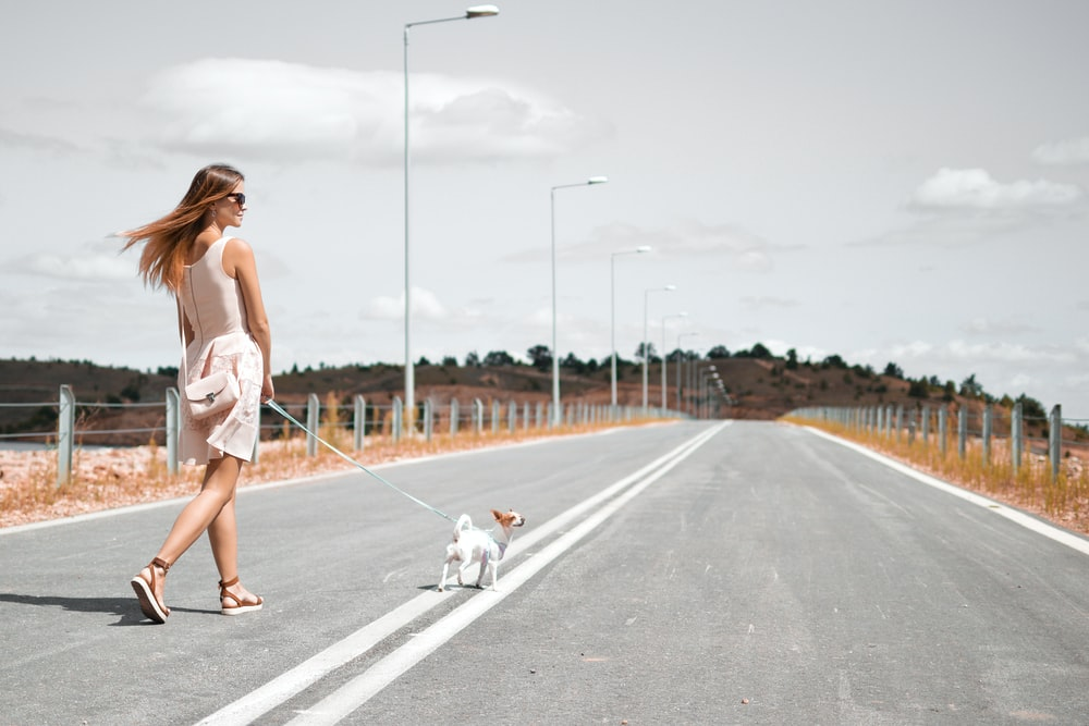 woman in white sleeveless dress holding harness of puppy walking on asphalt road during daytime