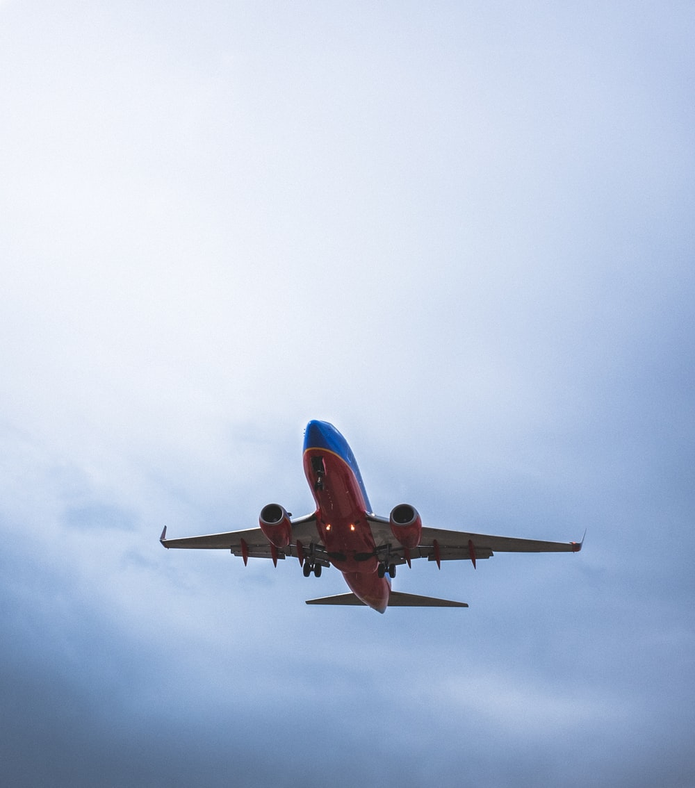 red and blue airliner