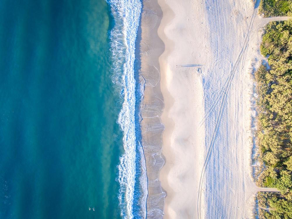 aerial photo of beach at daytime