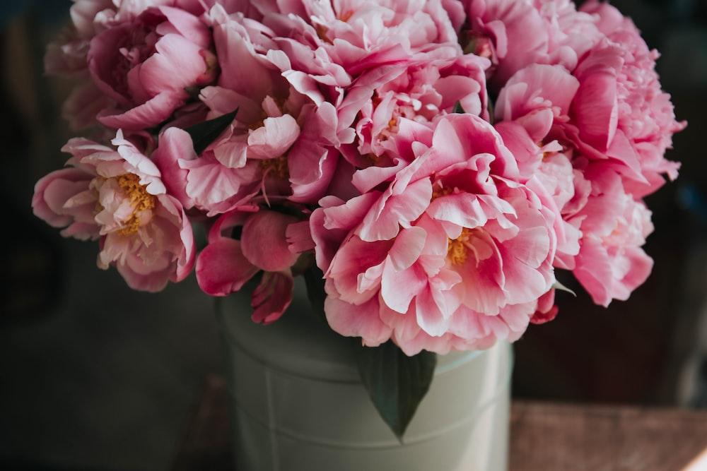 pink petaled flower arrangement