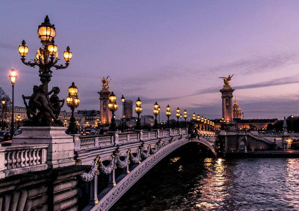 The Pont Alexandre bridge in Paris illuminated at dusk