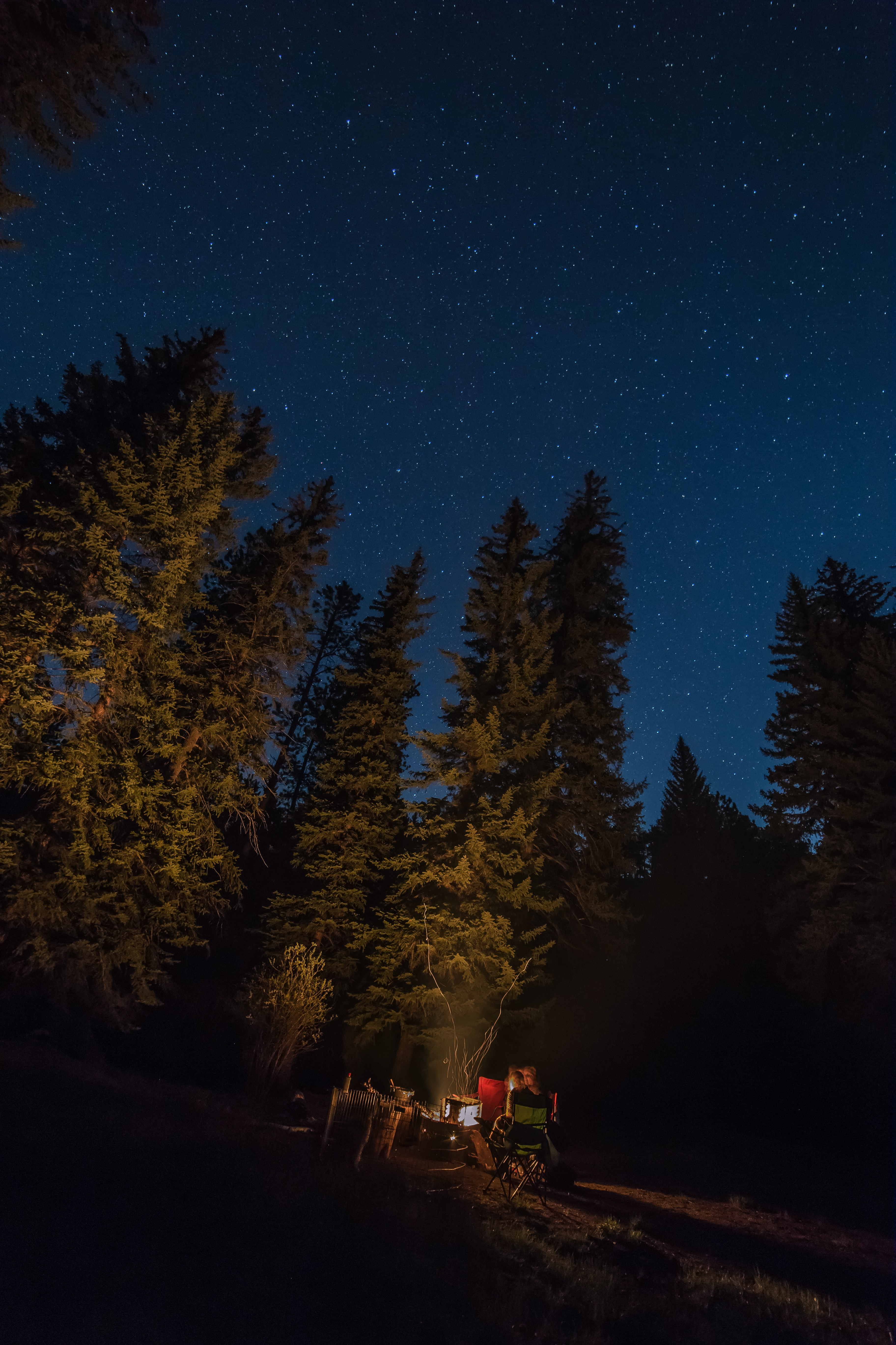 Camping in the woods on a clear starry night