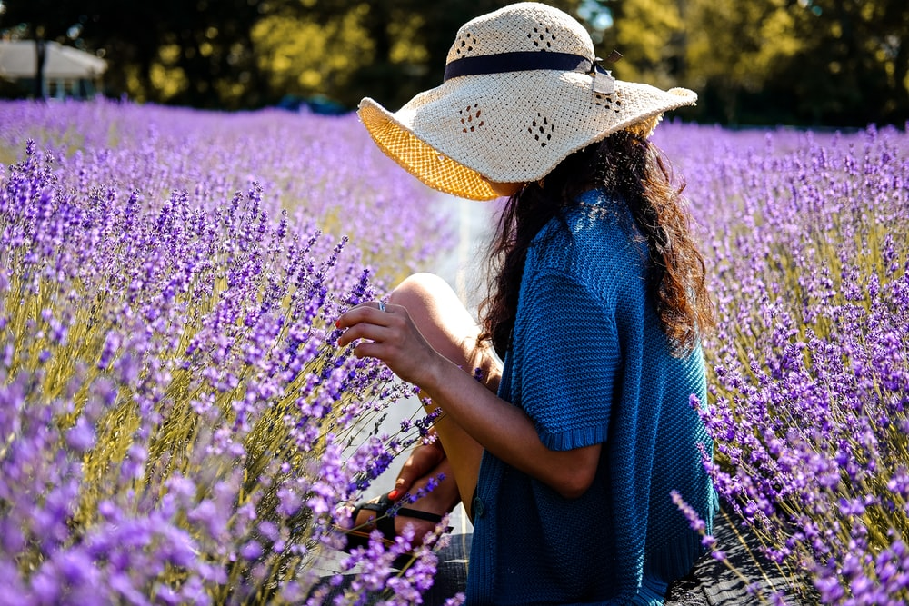 woman in between on purple lavender field taken at daytime