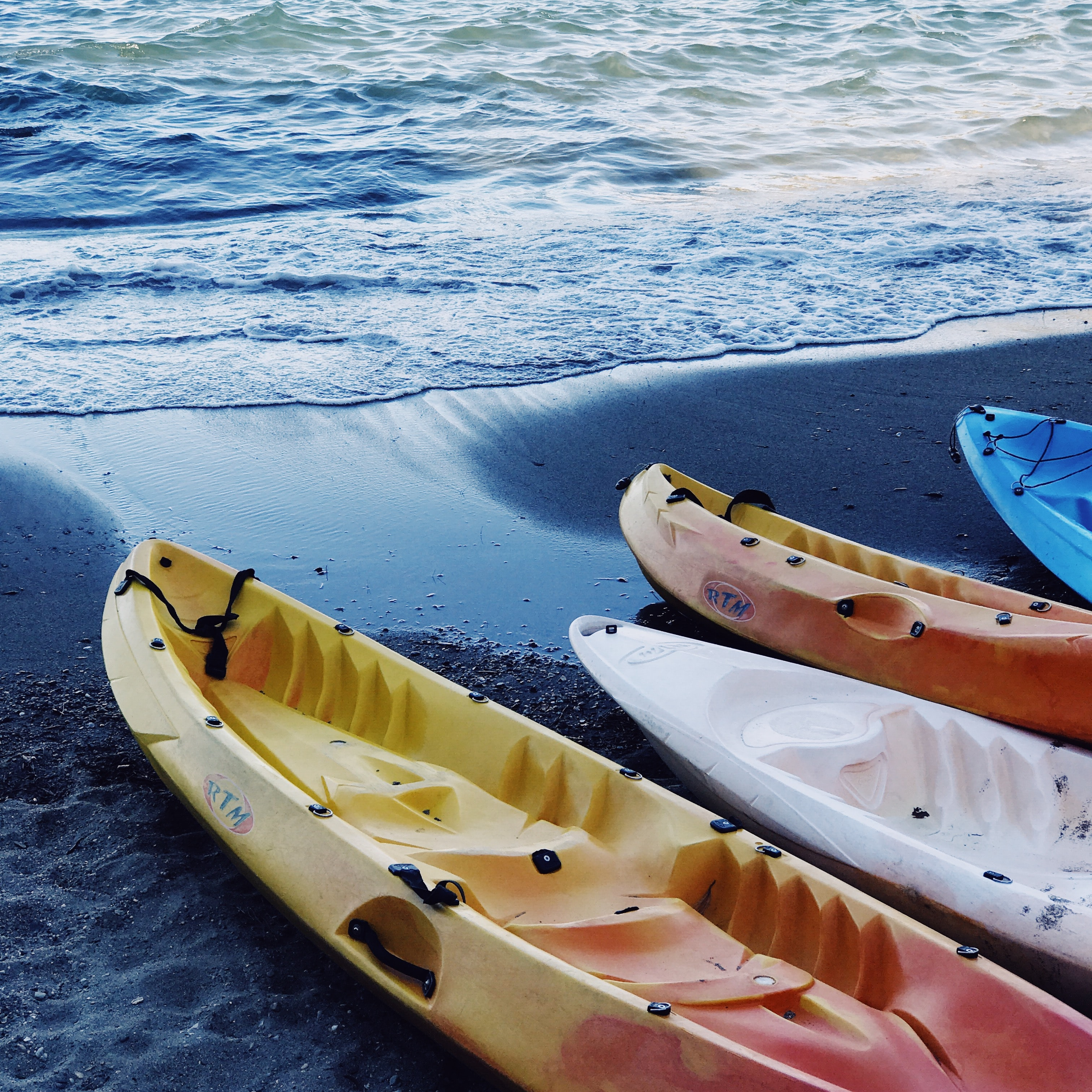 four assorted-color kayaks on seashore