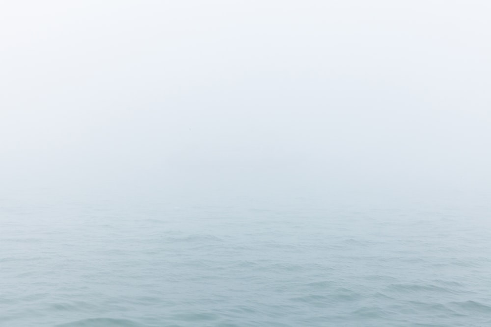 selective photography of body of water under white sky at daytime