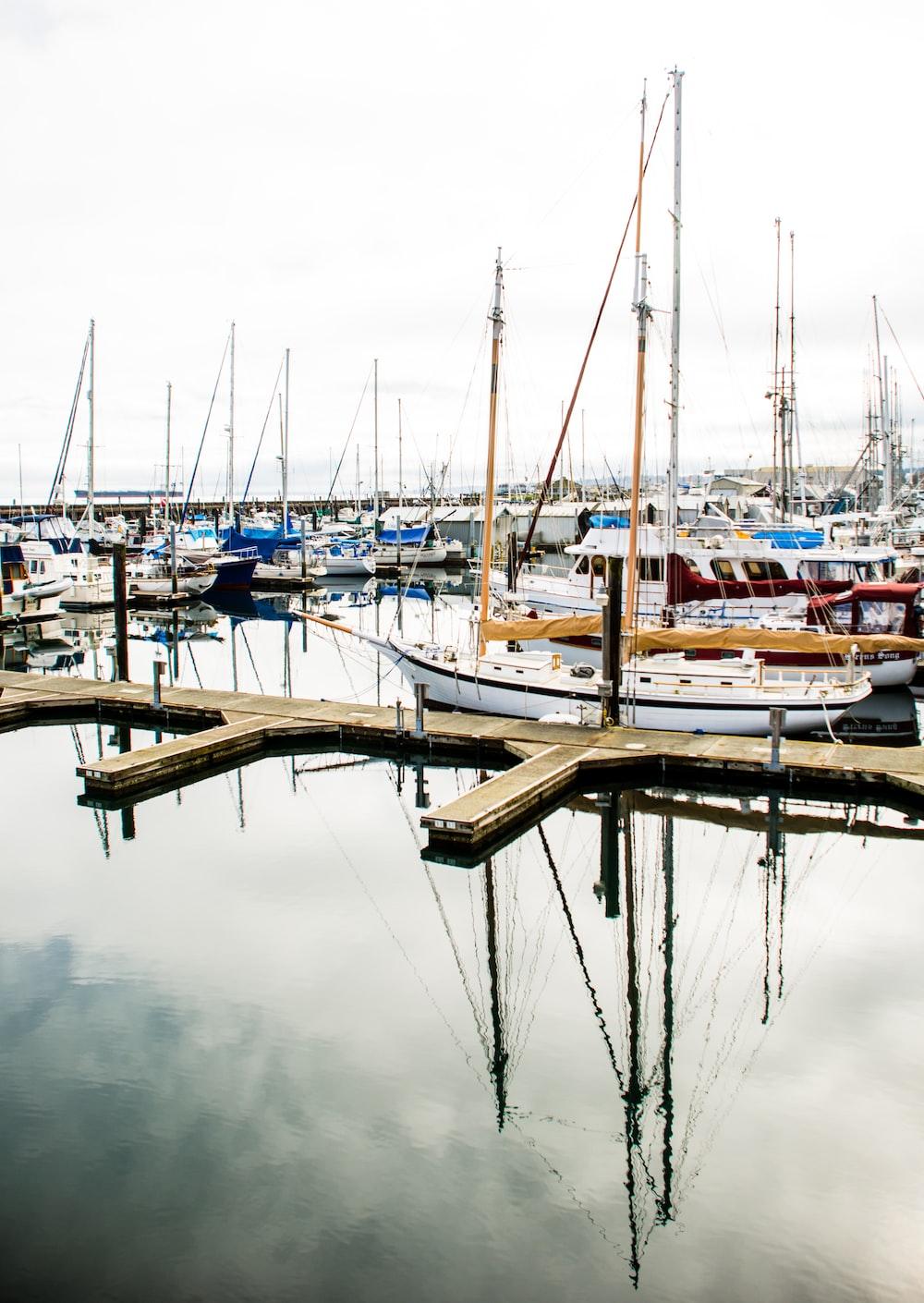 boats parking at dock