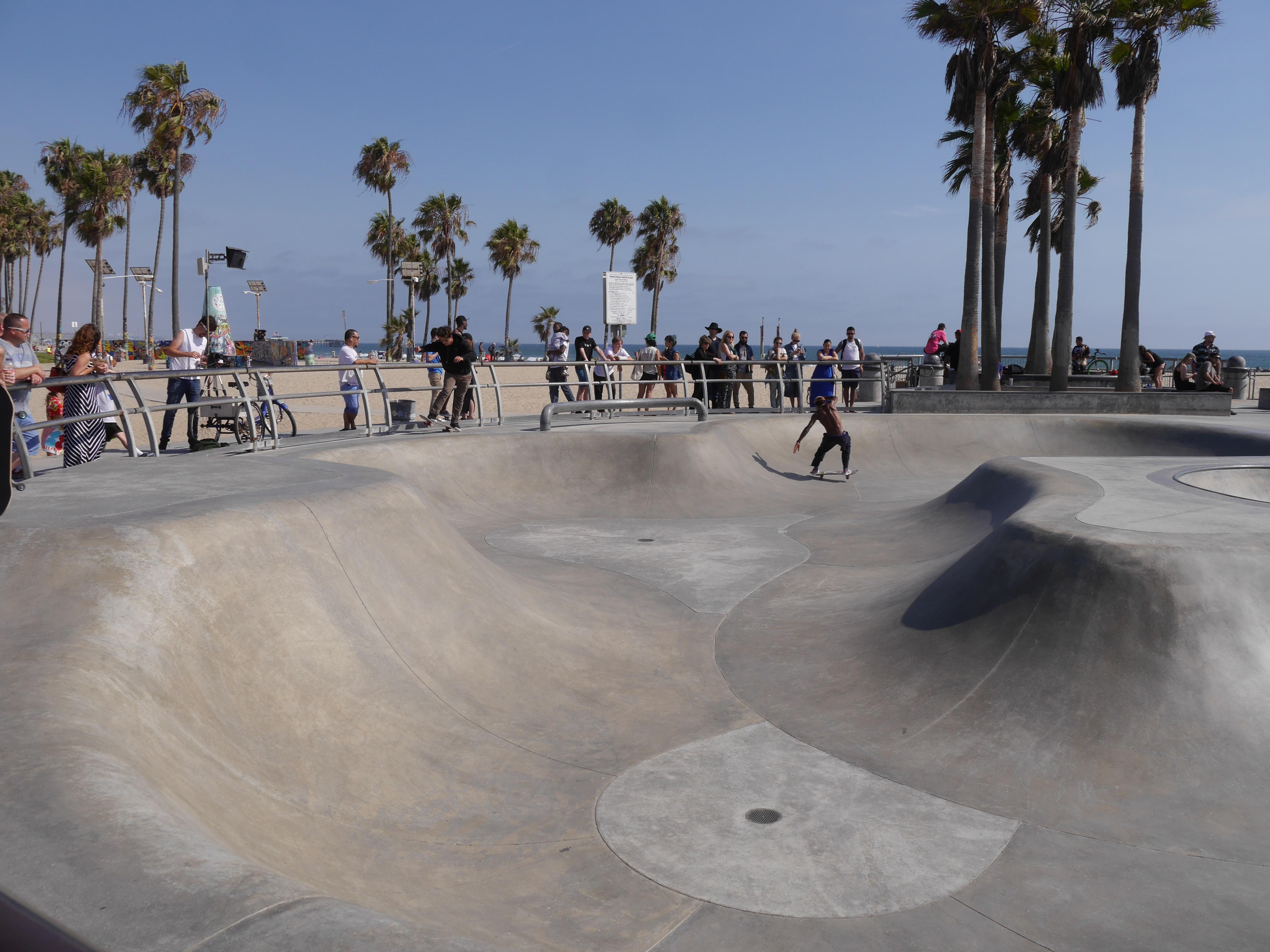 man skateboarding on park near coconut trees