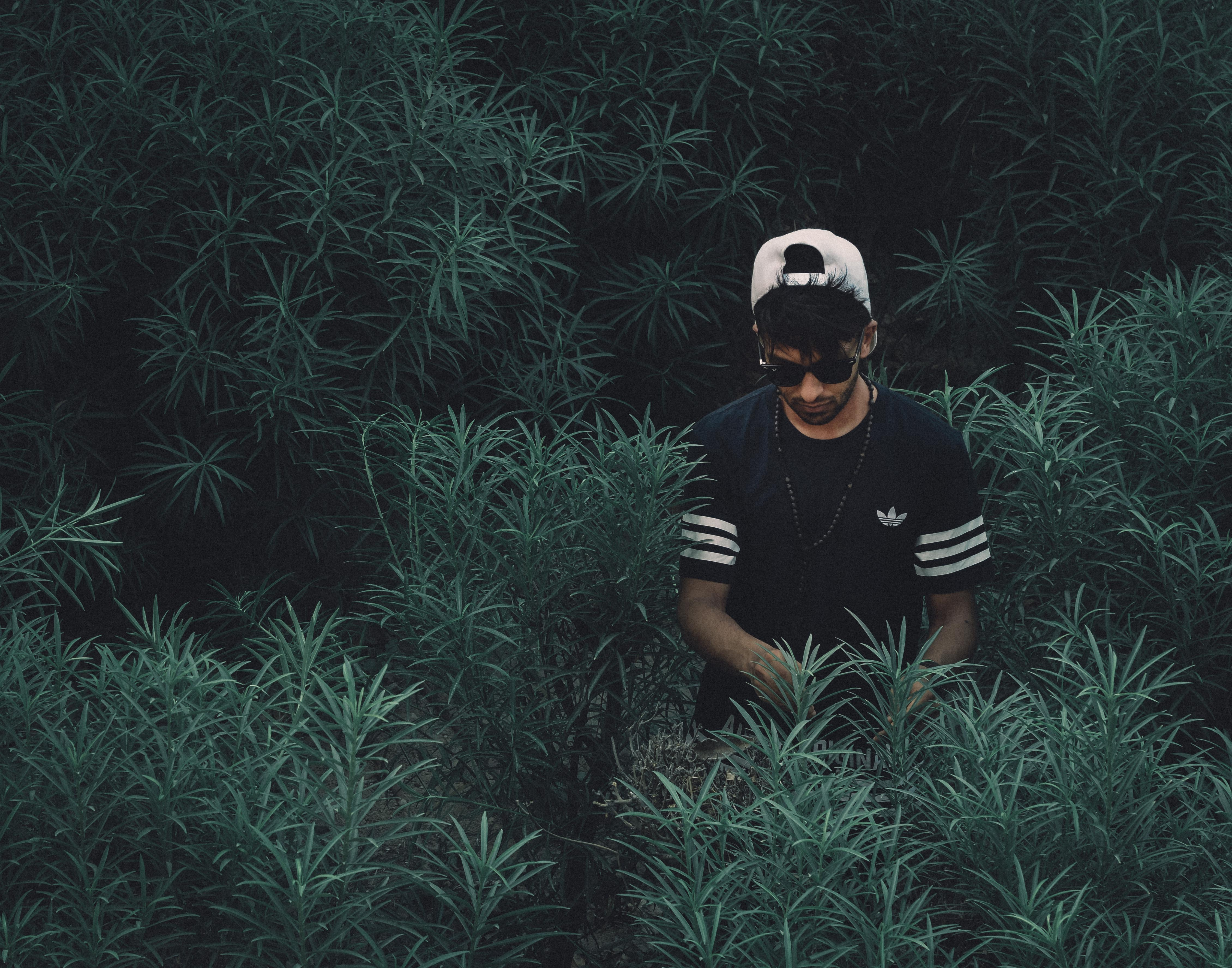 Trendy man in an adidas shirt standing among green leafy plants
