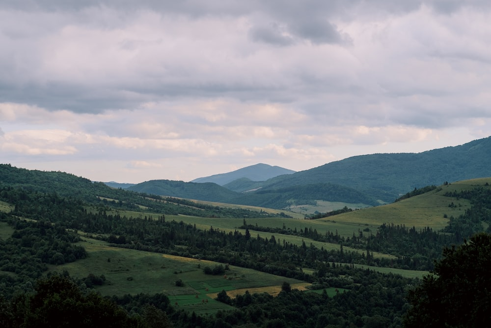 green plain surrounded by trees and mountain range at daytime