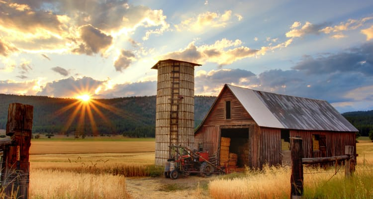 How to start an Agriculture Business