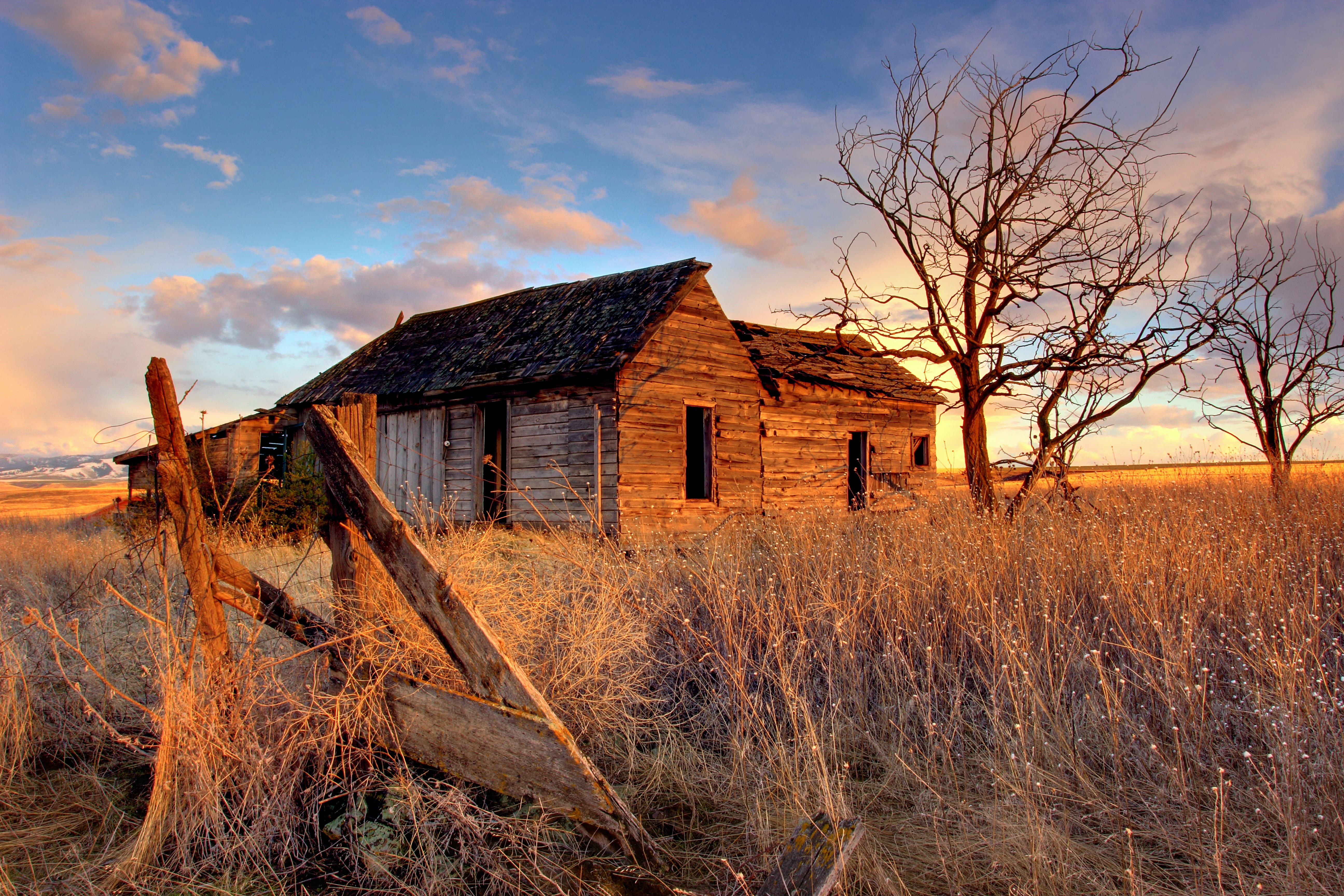 Abandoned cabin in a desolate grassy field in the country
