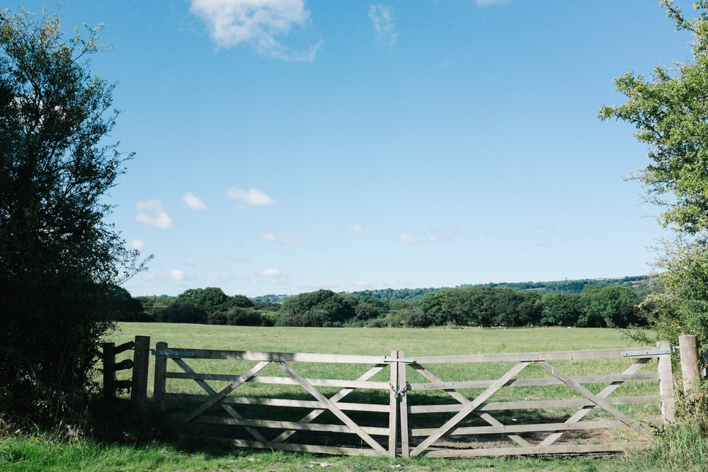 landscape photo of gray wooden gate during daytime
