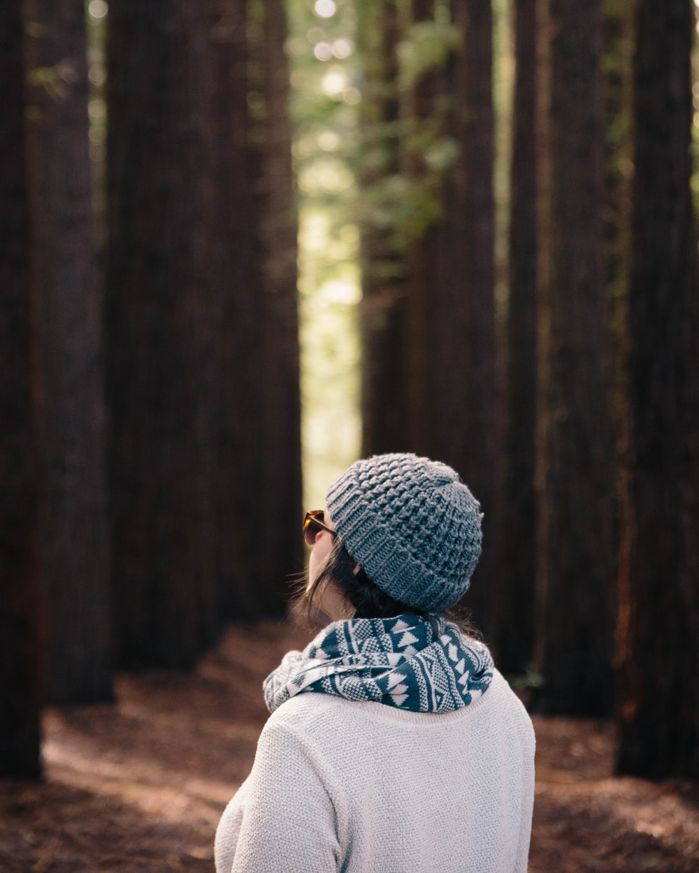depth of field photography of back view of person standing on woods