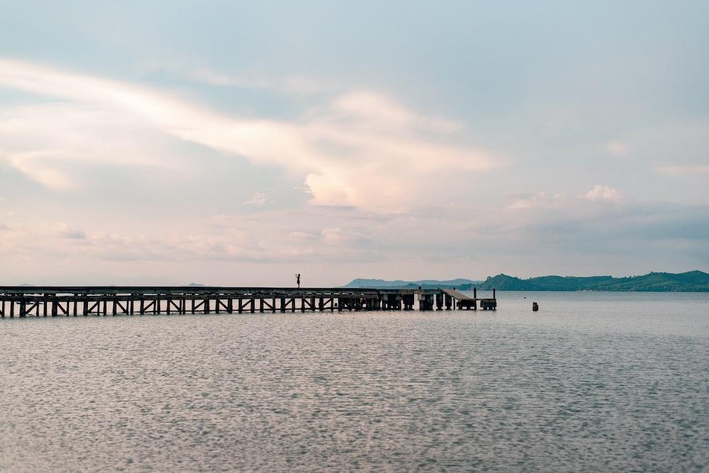 brown wooden sea dock