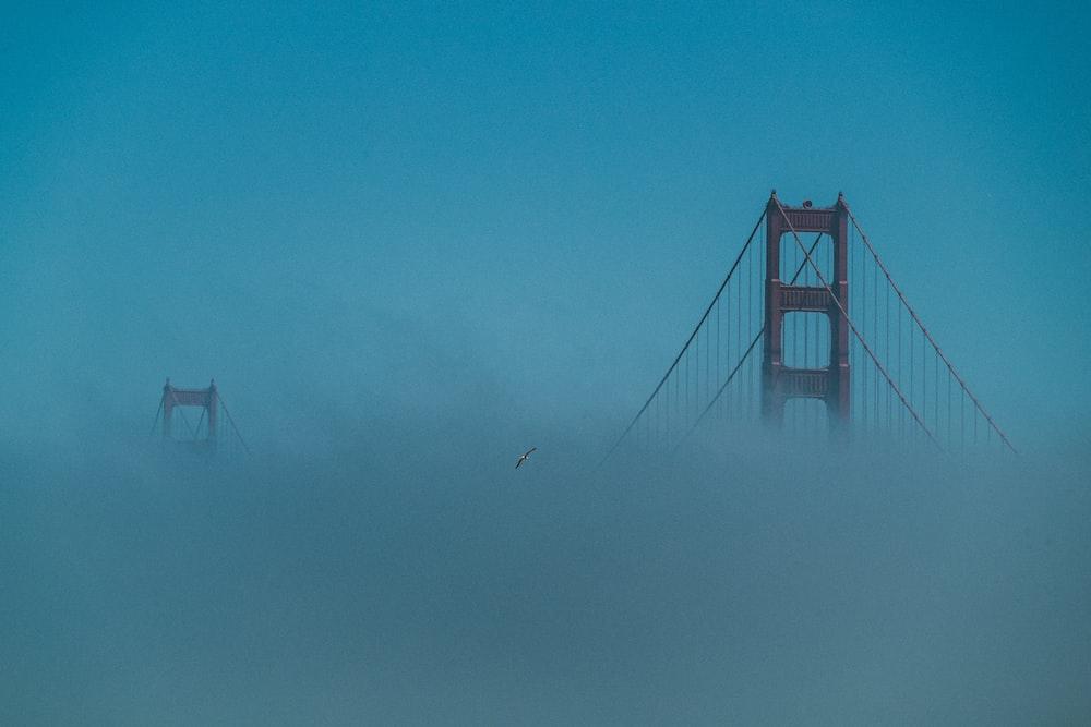 bridge covered with fog