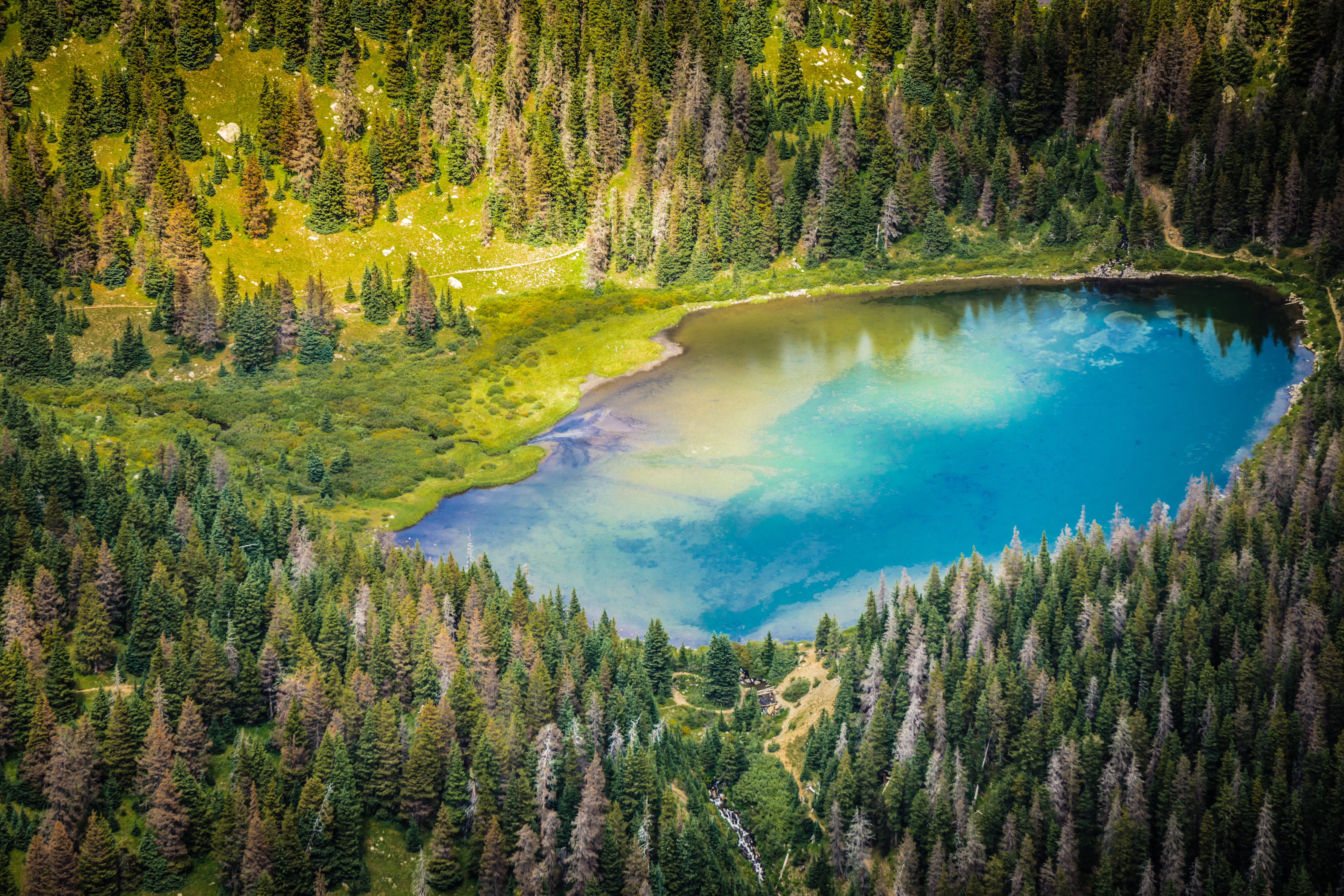 A colorful lake surrounded by green forests on a sunny day