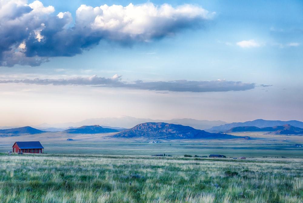 landscape photography of green open field