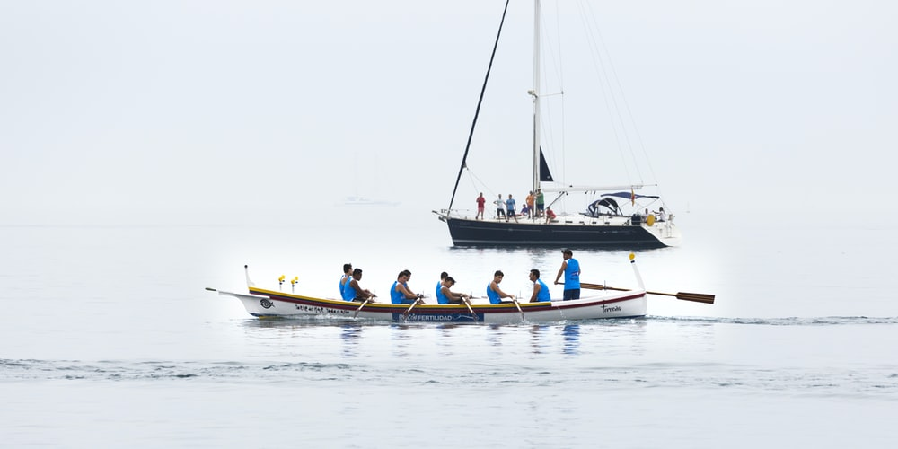 people rowing paddle on boat during daytime