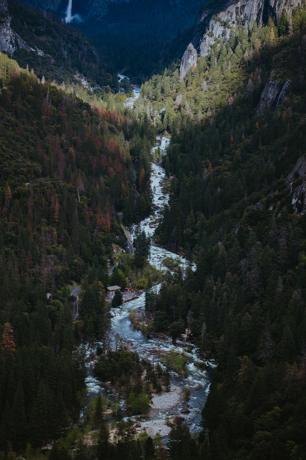 creek in between mountains covered with pine trees at daytime