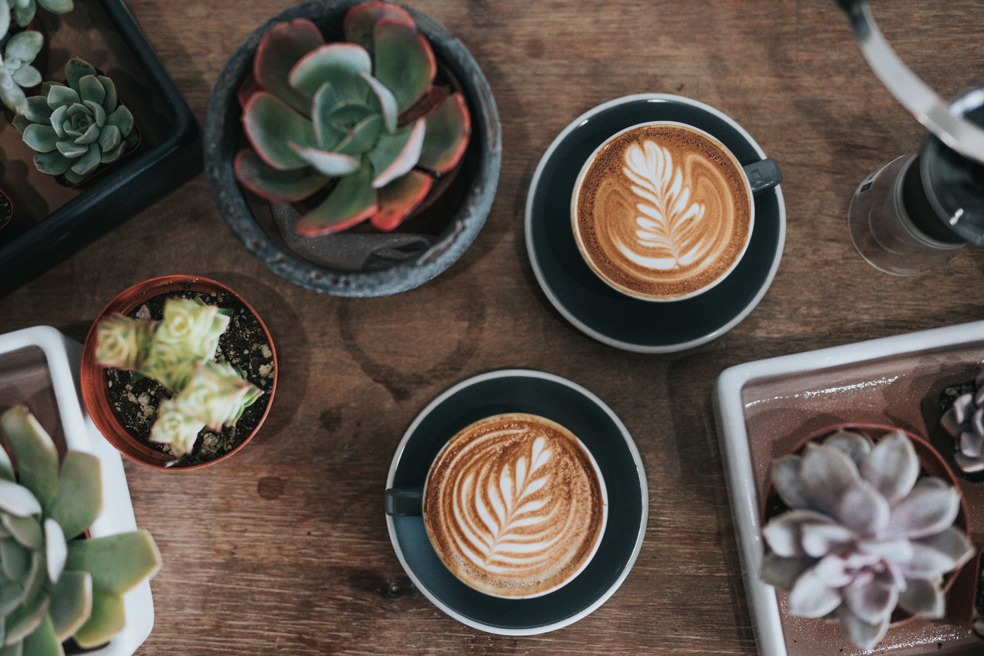 Coffee Shops image