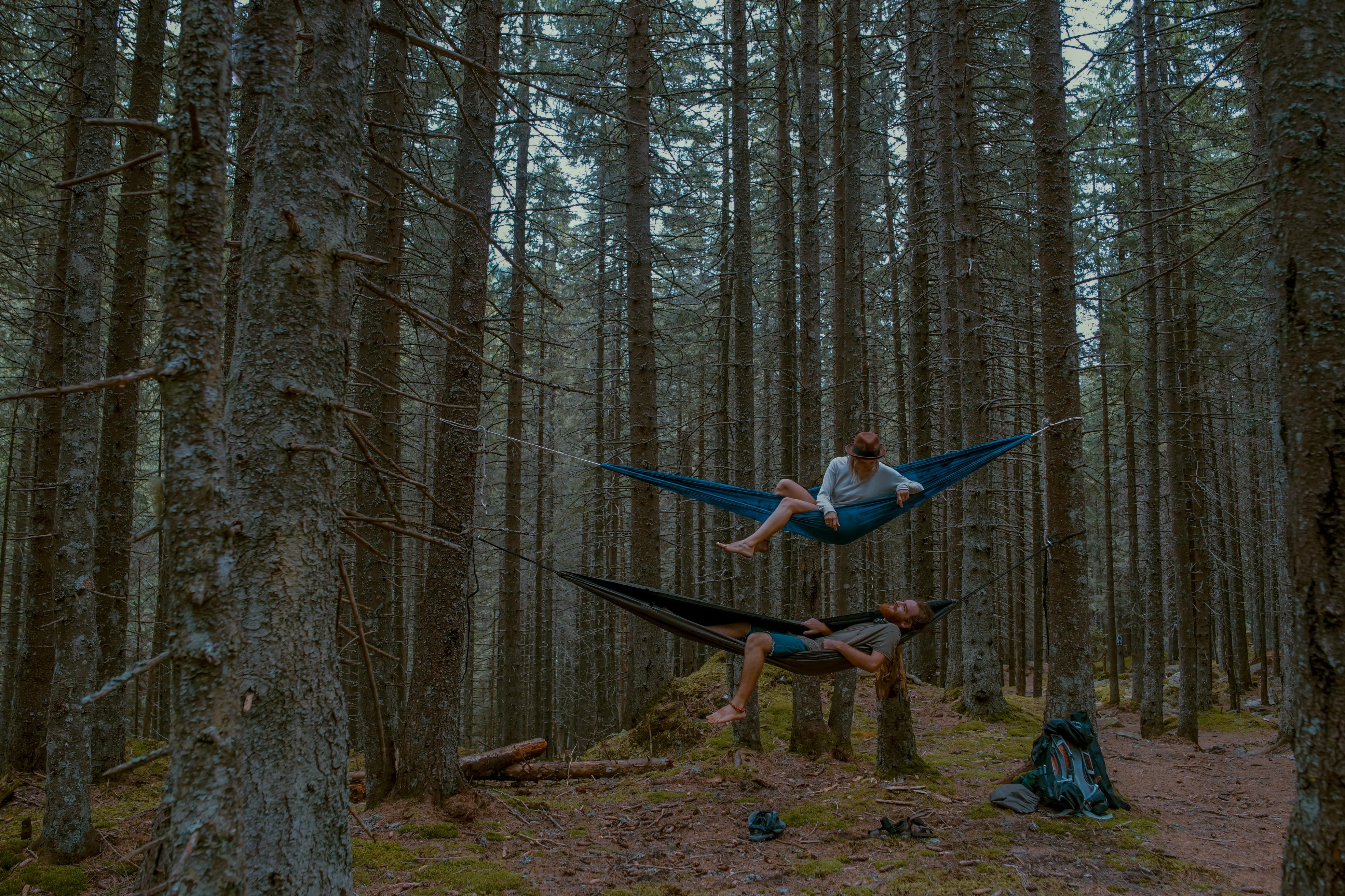 man and woman on hammock in between forest