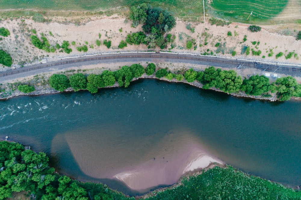 aerial photography of road beside body of water surrounded with trees