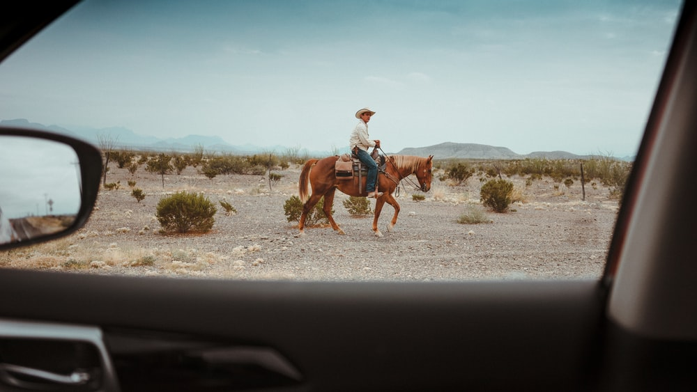 Looking out the car window at a cowboy riding a horse in the desert