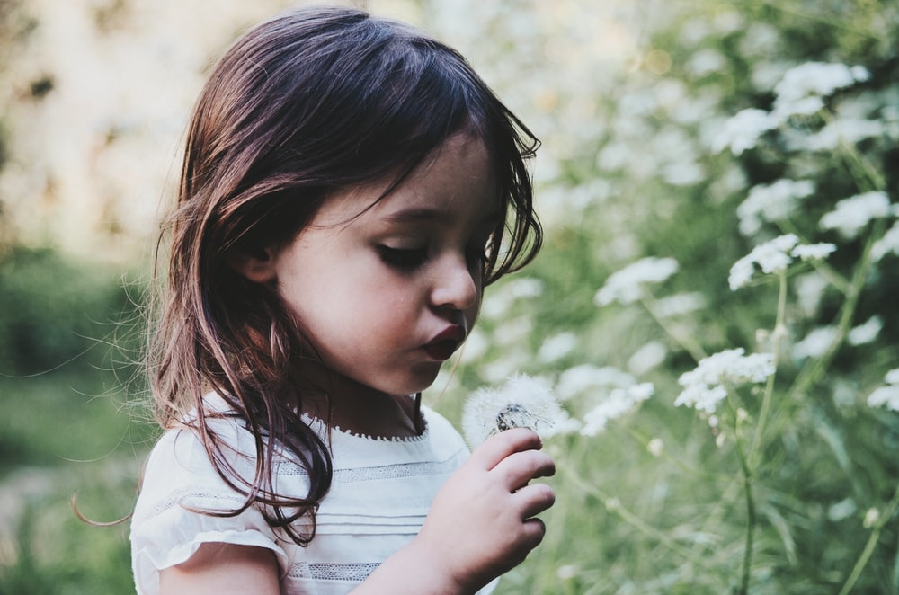 girl holding white flower during daytime