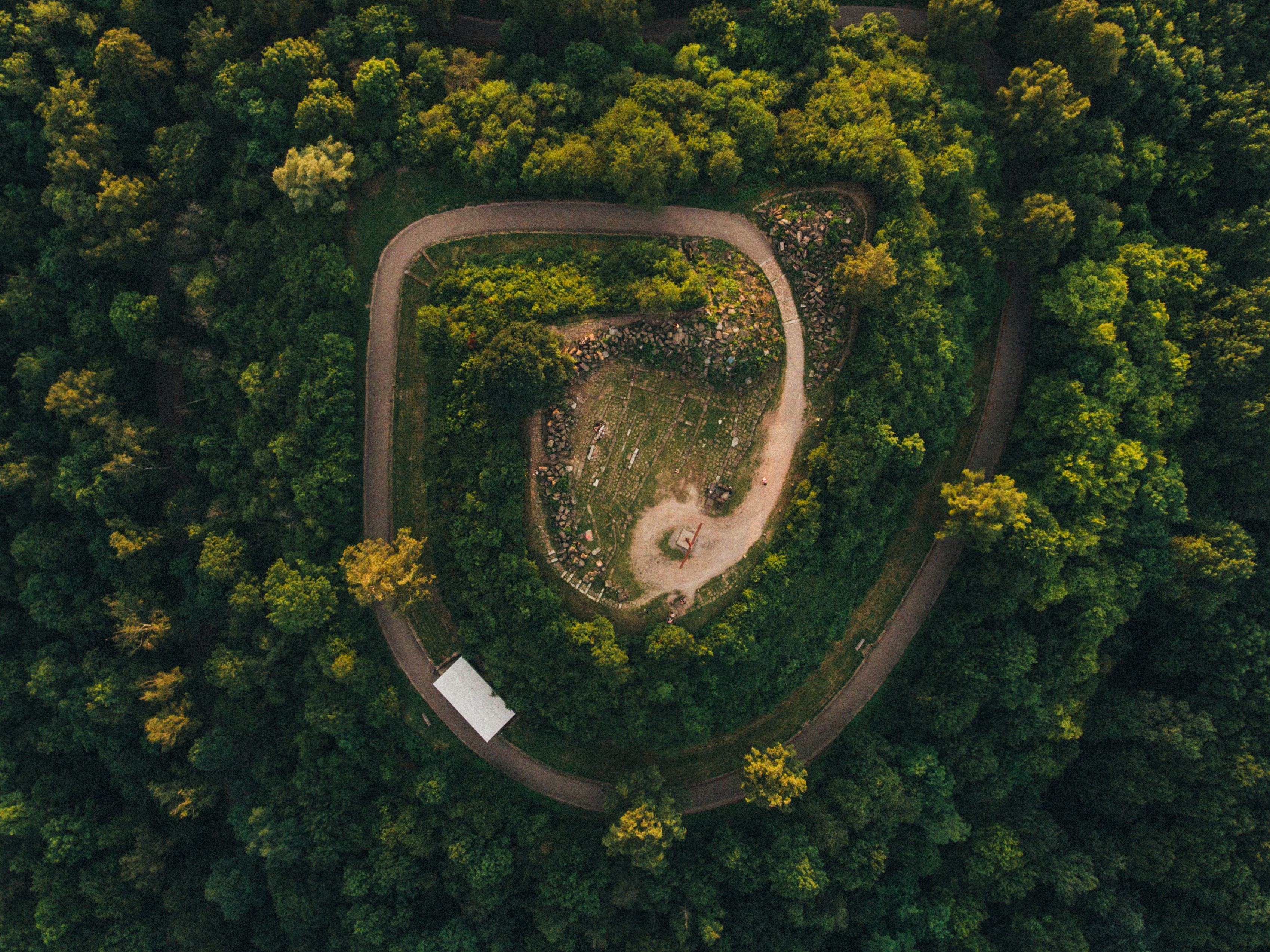 A drone shot of a spiral road in a forest