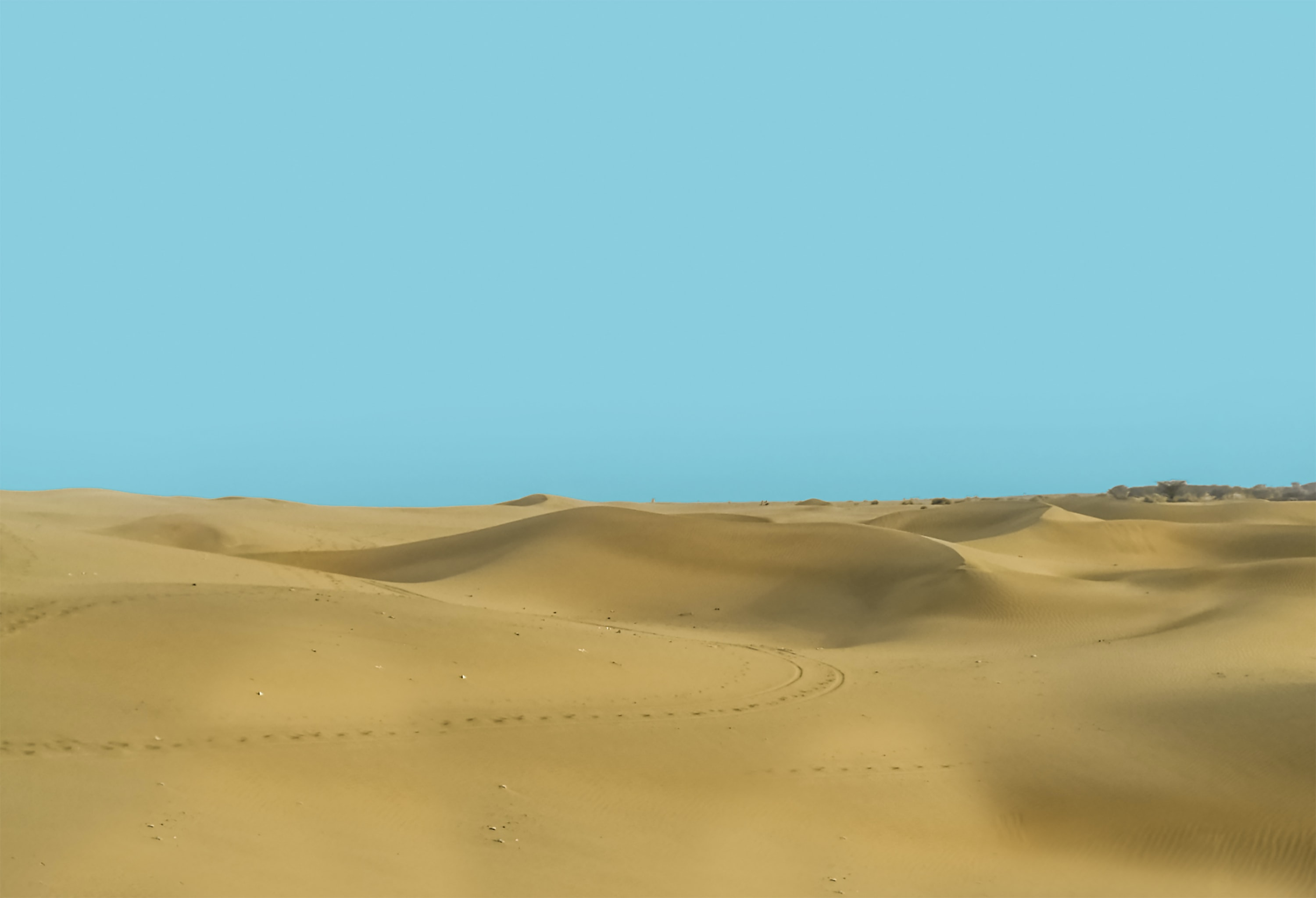 brown desert
