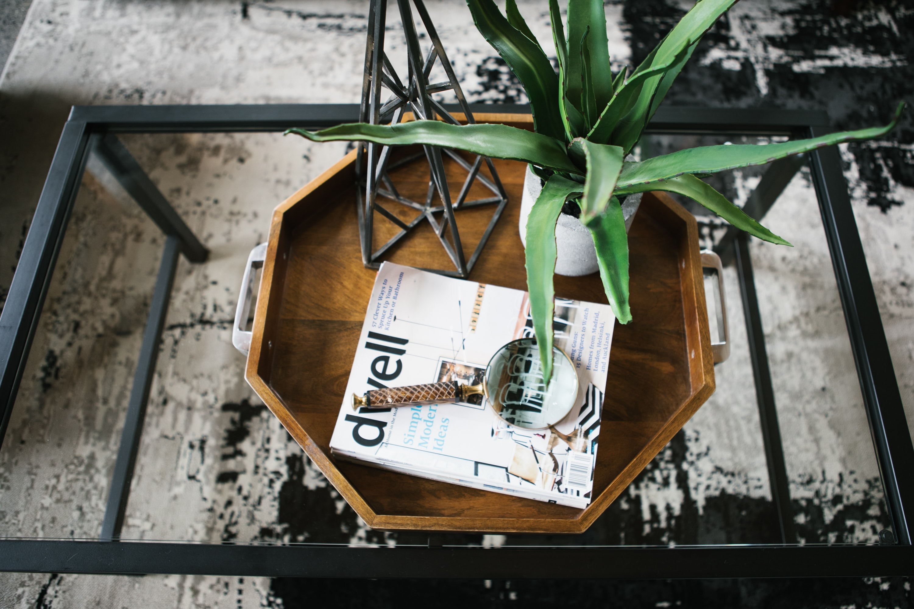 A tray, magazine, magnifying glass, aloe plant, and sculpture on a glass table in Portland