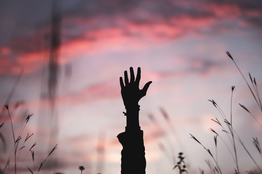 The silhouette of a hand and arm being raised against a purple and pink sky in a field