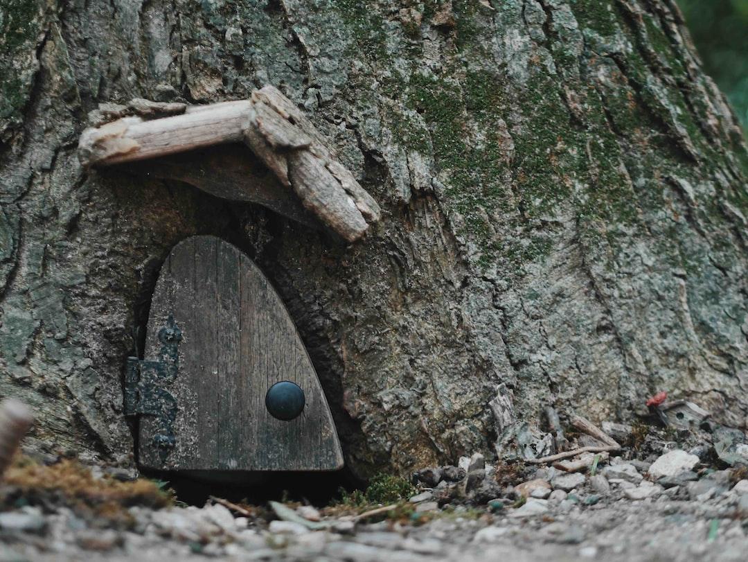 The Tiny Gnome House
