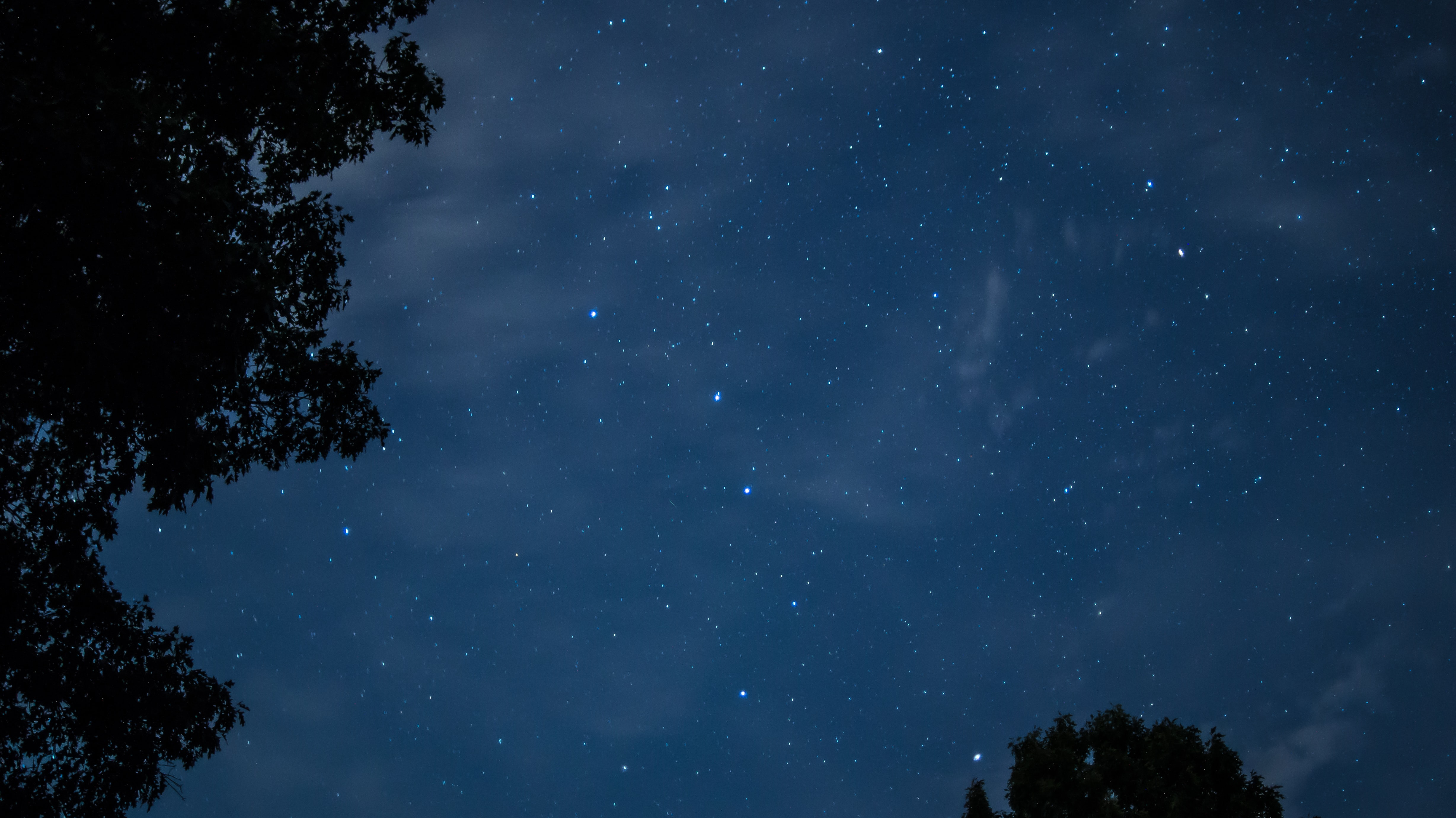 low-angle photo of starry night