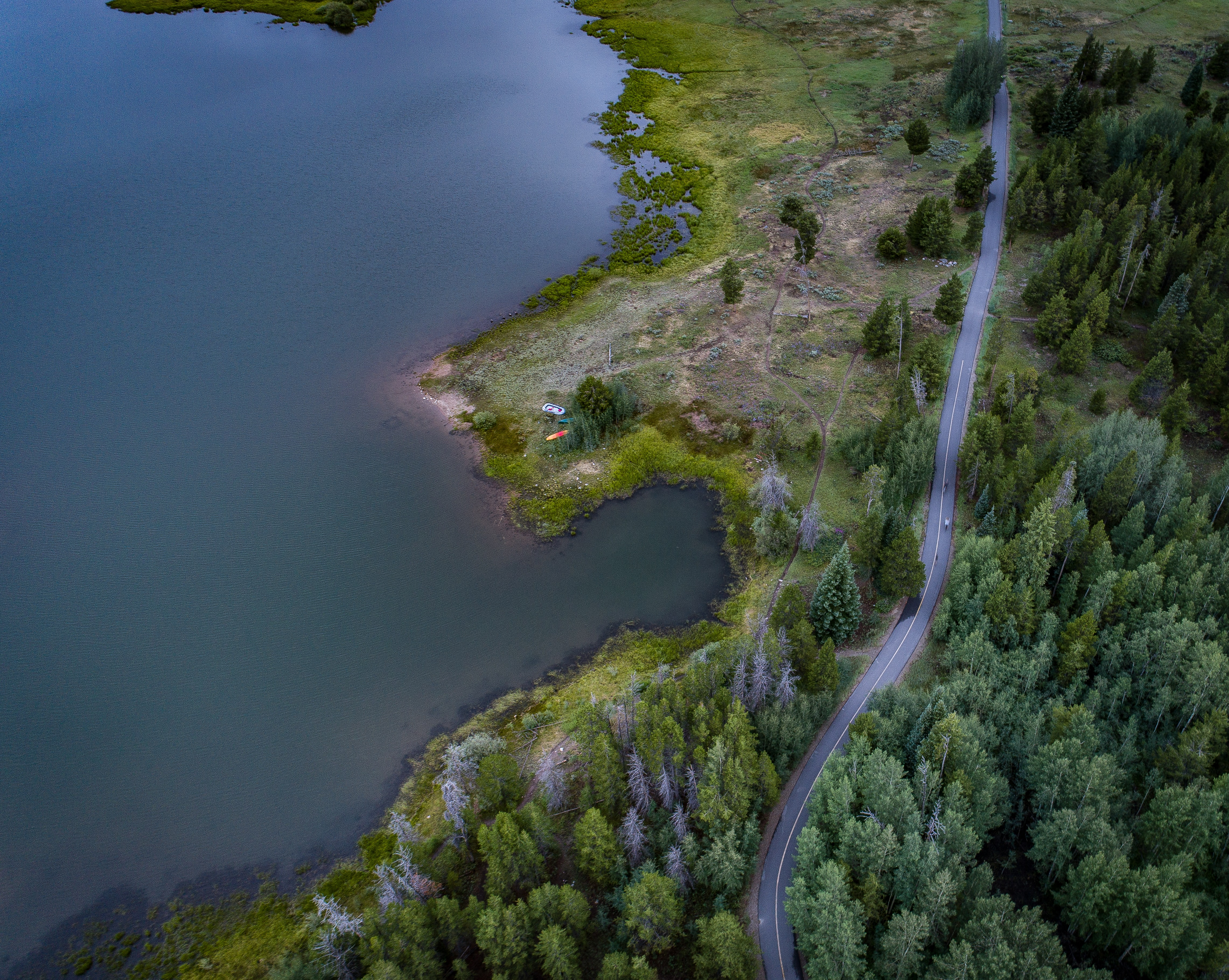 areal view of body of water and green trees
