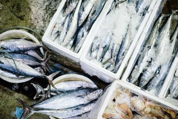 Россия получила право на экспорт рыбы во Вьетнам